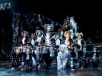 2020音乐剧《猫CATS》西安站订票指南+出行攻略