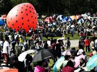 重庆近期有哪些音乐节
