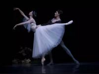 2020芭蕾舞剧《吉赛尔》聊城站时间、地点、门票价格